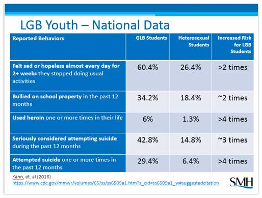 LGB Youth - National Data Chart