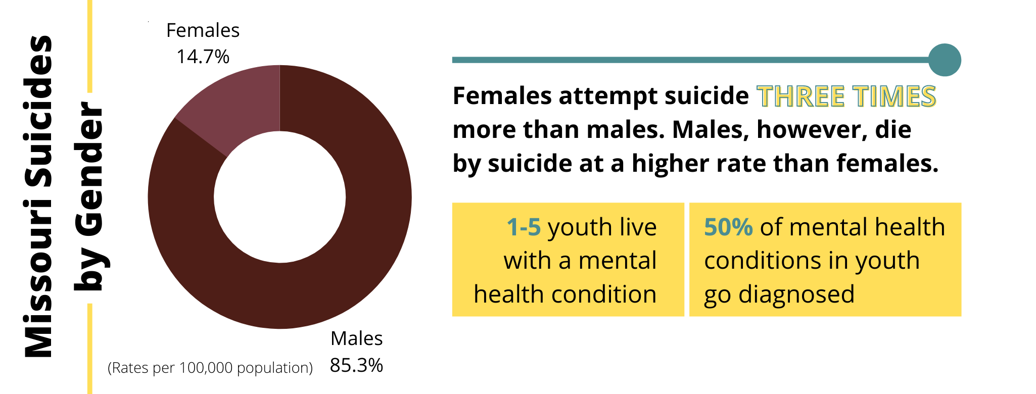 MISSOURI SUICIDE FACTS AND FIGURES EDITED (1)